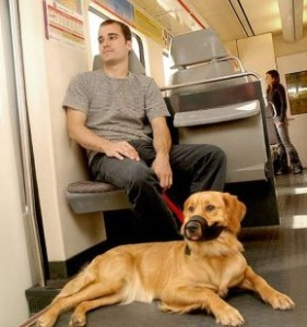 Mascotas en trenes de cercanias