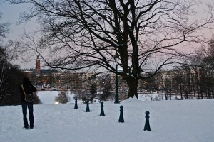 Neve em Bruxelas (Woluwepark)